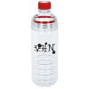 Double Up Sport Bottle - 20 oz.