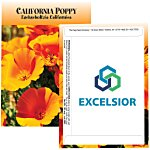 Standard Series Seed Packet - California Poppy