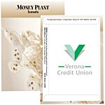 Standard Series Seed Packet - Money Plant