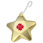 Shatterproof Ornament - Star - 24 hr