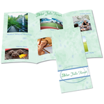Tri-Fold Brochure - 8-1/2