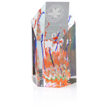 Fascination Art Glass Award