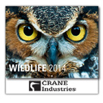 Wildlife 13-Month Wall Calendar