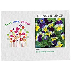 View a larger, more detailed picture of the Impression Series Seed Packet - Johnny Jump-Up