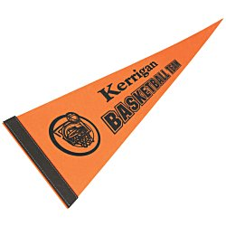 View a larger, more detailed picture of the Pennant 8 x 18 - Color