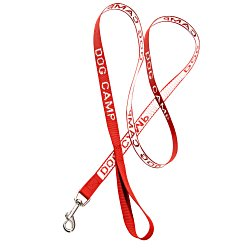 View a larger, more detailed picture of the Woven Dog Leash