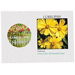 View a larger, more detailed picture of the Impression Series Seed Packet - Coreopsis
