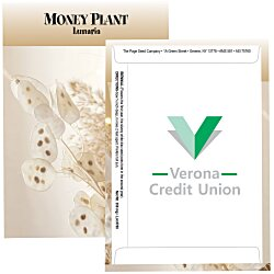 View a larger, more detailed picture of the Standard Series Seed Packet - Money Plant