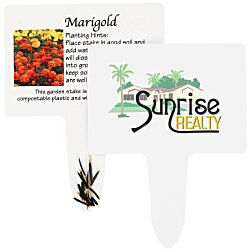 View a larger, more detailed picture of the Compostable Seed Stakes - Marigold