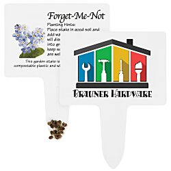 View a larger, more detailed picture of the Compostable Seed Stakes - Forget Me Not