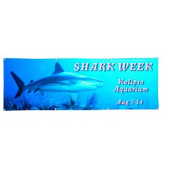 View a larger, more detailed picture of the Vinyl Full Color Banner - 2 x 6