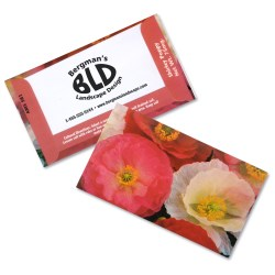 View a larger, more detailed picture of the Business Card Seed Packet - Shirley Poppy