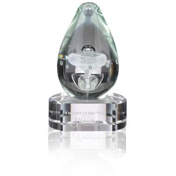 View a larger, more detailed picture of the Polar Art Glass Award - Clear Base