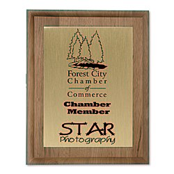 View a larger, more detailed picture of the Walnut Finished Wood Plaque w Aluminum Plate - 10